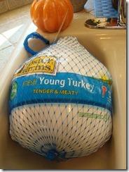 Preparing Thanksgiving Dinner 2011-11-24 2011-11-24 001