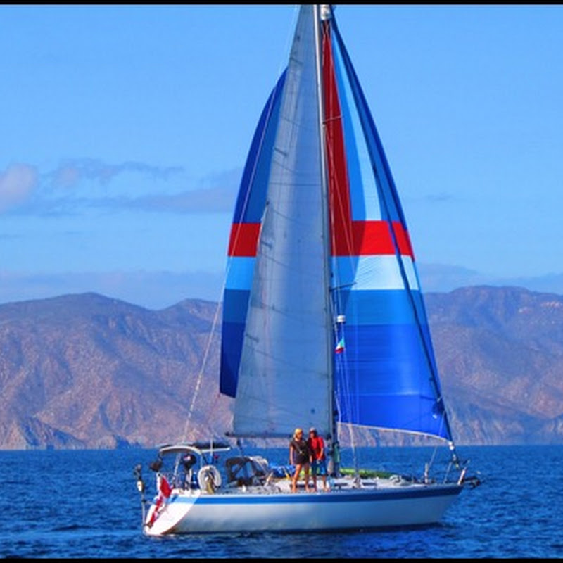 Images from the Sea of Cortez
