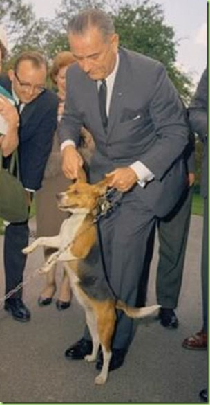 LBJ_pulling_beagle_ears