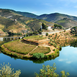Douro Valley by Antonio Amen - Landscapes Mountains & Hills ( region, port wine, river douro, portugal, douro, world heritage patrimony )