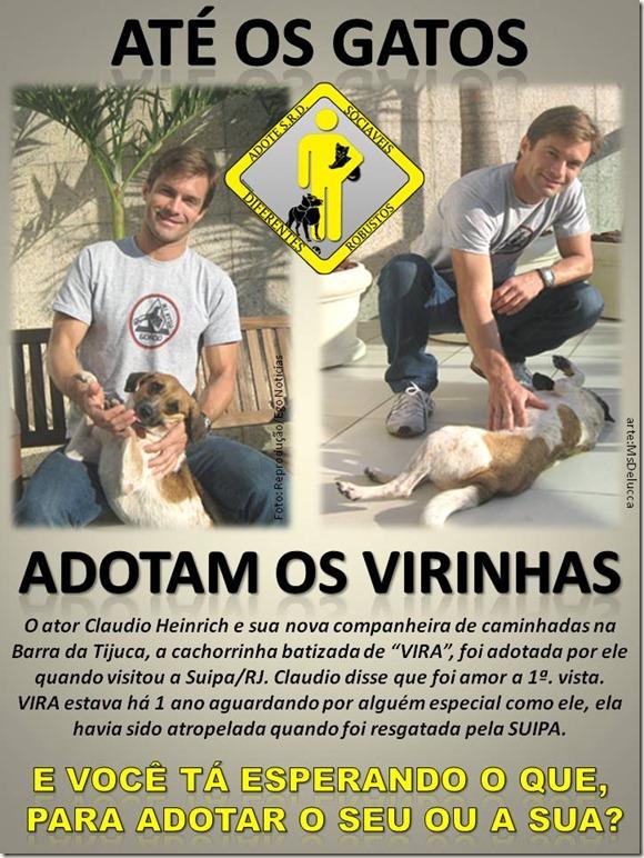 gatos_viras