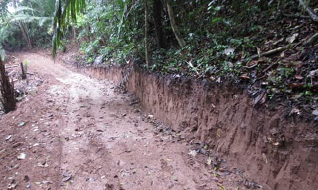 An illegal road running towards the Purus National Park which could connect the remote Purus region to the rest of Peru. Photo: RCP / SERNANP