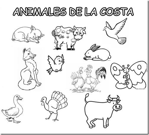 ANIMALES DE LA COSTA