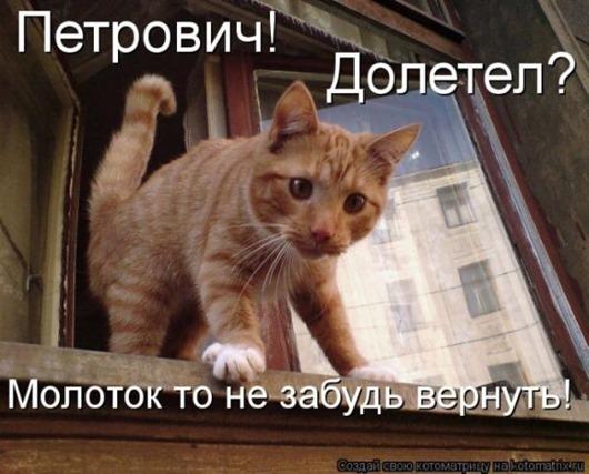 1285499796_1284712876_kotomtrix_10