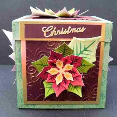 PoinsettiaBox24