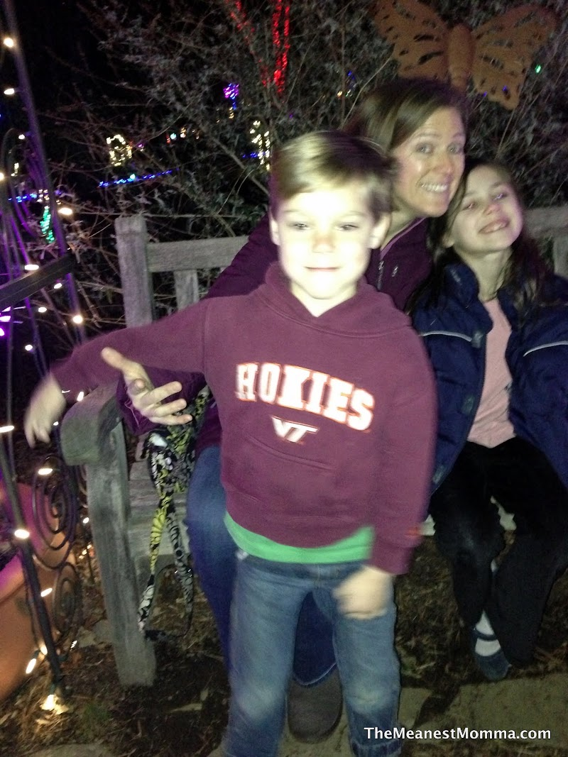 meadowlark gardens winter walk of lights the meanest momma