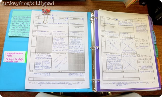 Luckeyfrog's Lilypad Lesson Plan Template