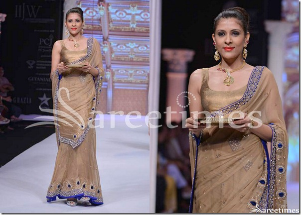 Day_3_IIJW_Brown_Saree