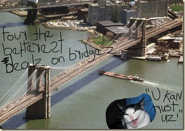 KweeCats_Selling_Brooklyn_Bridge