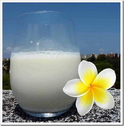 חלב עם פרח