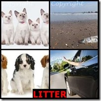 LITTER- 4 Pics 1 Word Answers 3 Letters