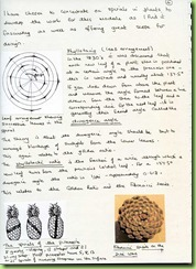 9.Page 4
