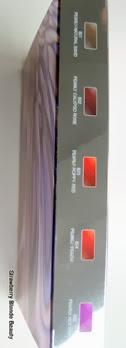 Kiko-Ultra-Glossy-Stylo-Lipstick-Set-colours