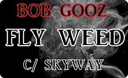 Bob Gooz - Fly Weed Feat Skyway