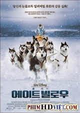Bầy Chó Tuyết
