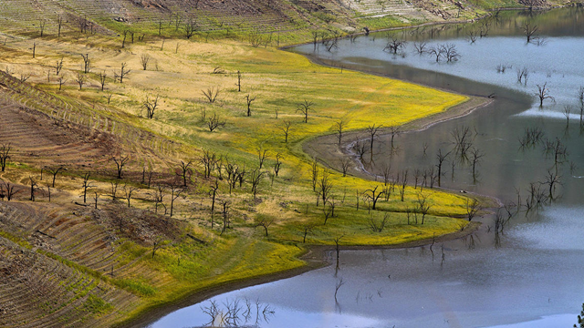 Water rings mark receding levels of California's Pine Flat Reservoir. Photo: Allen J. Schaben / Los Angeles Times