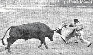 1908-05-24-p.-28-Nuevo-Mundo-Corrida[1]