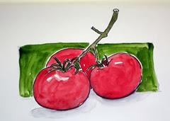 daily tomato 12 30 13