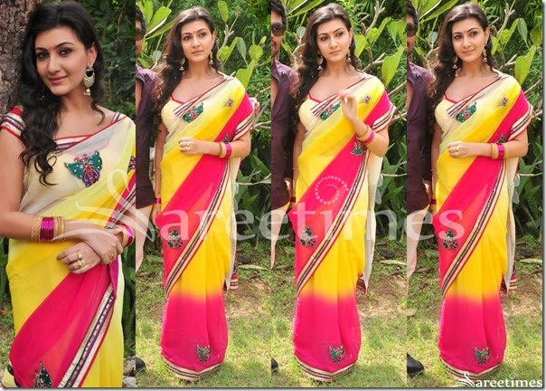 Neelam_Upadhyay_Dual_Color_Saree