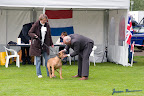 20100513-Bullmastiff-Clubmatch_30847.jpg