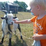 Besøg på Smallfarm ved Otterup, hvor man kunne klappe geder, heste, kaniner og smågrise.