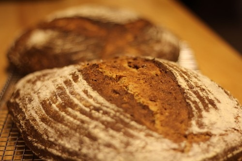 aramanth-potato-spelt-sourdough_027