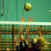 volley rsg2 127.jpg