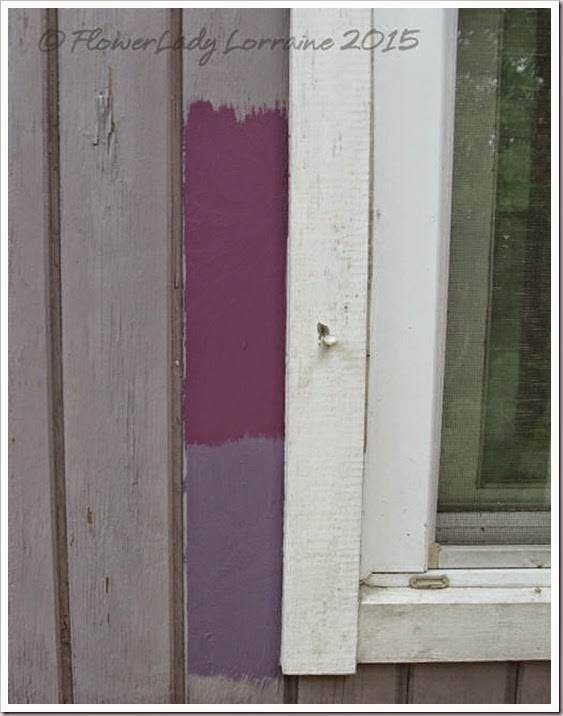 03-09-ex-orch-peru-violet