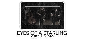 Inti Rowland - Eyes of a Starling