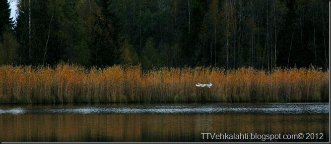 lempiöjärvi 018