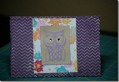 PB owl knockoff 014