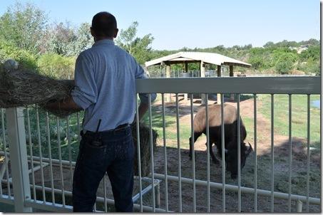 07-11-11 zoo 19