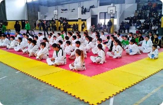 Se realizó el 2º Encuentro de Iniciación y Desarrollo Deportivo de Taekwondo Olímpico en Las Toninas