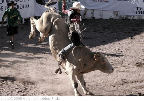 'rodeo' photo (c) 2006, Martin benavides - license: http://creativecommons.org/licenses/by/2.0/