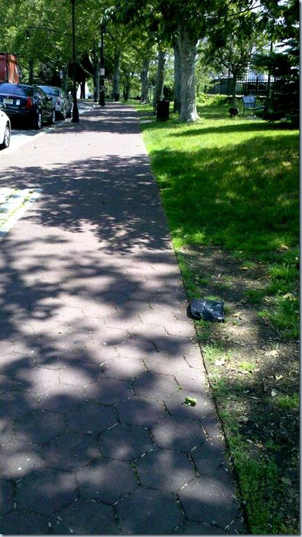 Sunny  Sidewalks_11-33-20_522