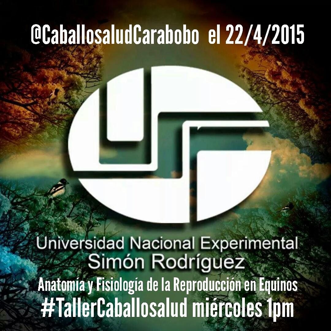 CABALLO SALUD: 22/4/2015 Taller de Anatomia y Fisiología ...