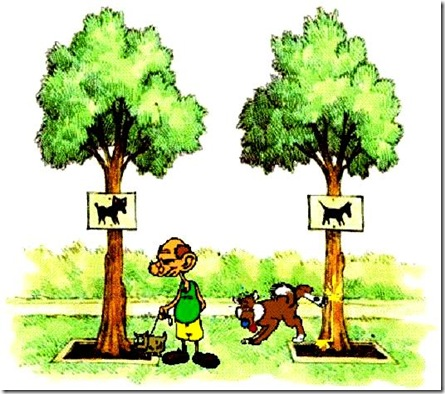 Me-dog & BHO-Tree