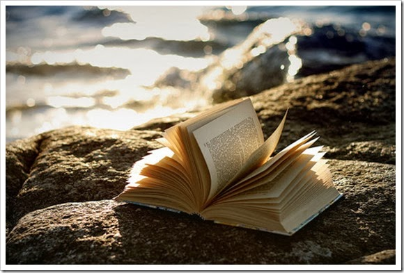 Lectura semana don dividendo 10-2014