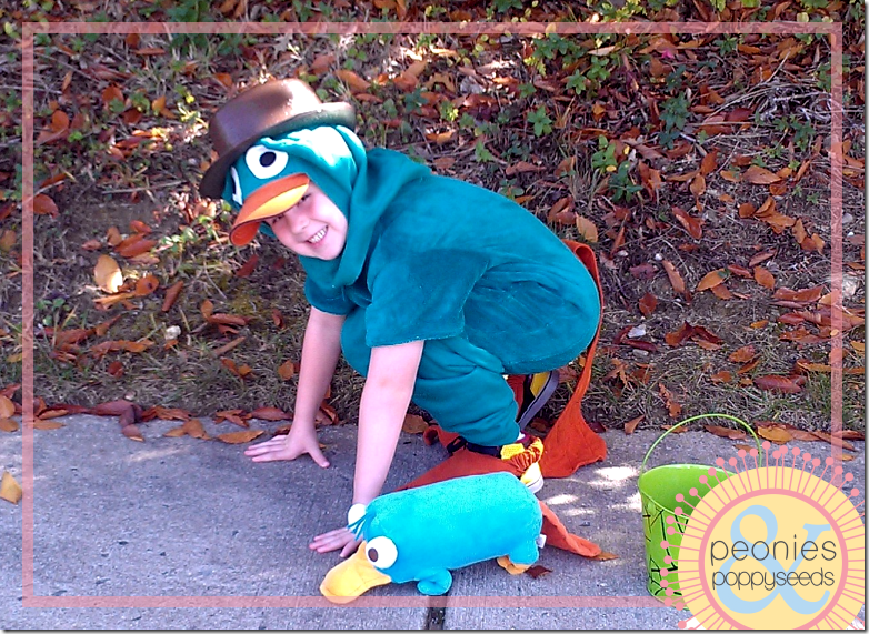 DIY Perry the Platypus Halloween costume