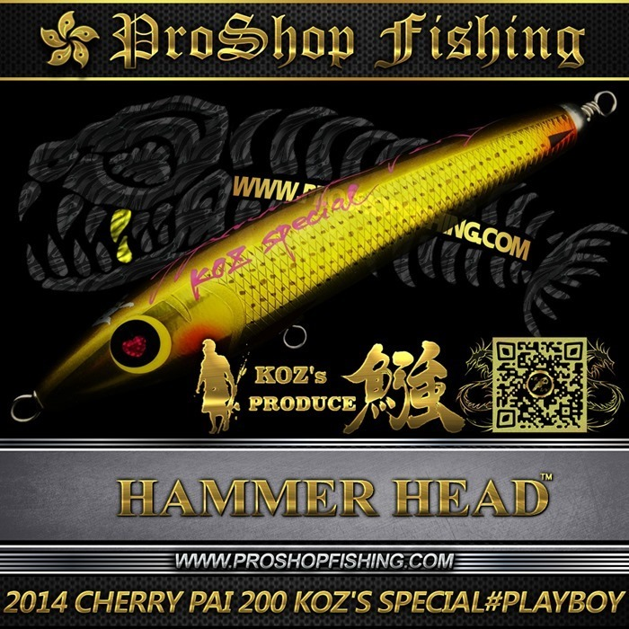 2014 CHERRY PAI 200 KOZ'S SPECIAL #PB (3)_thumb