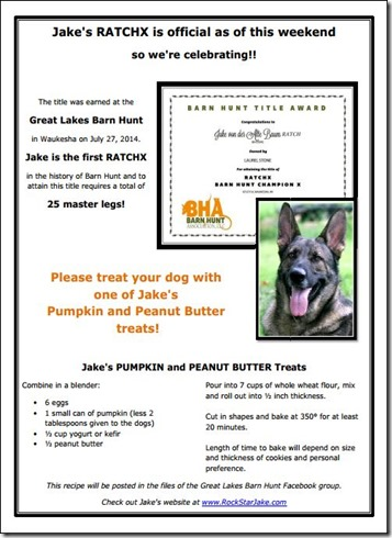 Jakes Peanut Butter and Pumpkin Treats