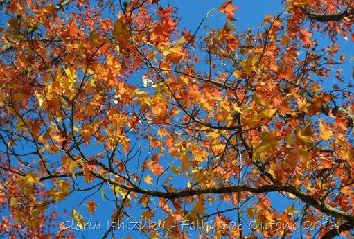 Glória Ishizaka - Outono 2013 - 62