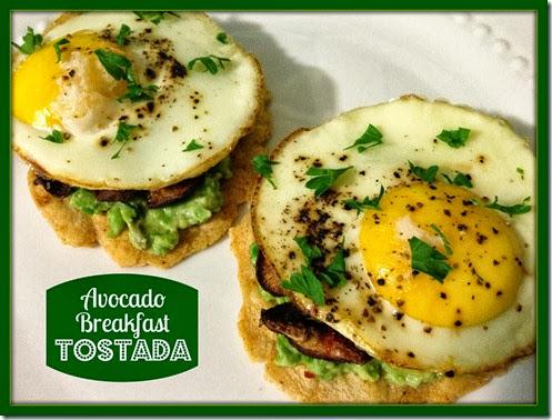 avocado breakfast tostada