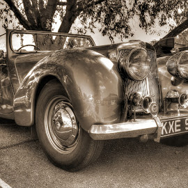 Triumph Roadster by Stephen Hall - Transportation Automobiles ( car, monochrome, reflections, roadster, triumph, shiny )