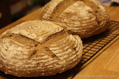 walnut-and-seed-bread033
