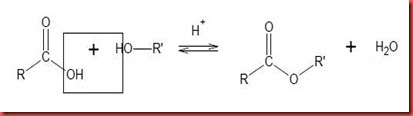 esterification and hydrolysis methyl benzoate by Incompatibility, during ester hydrolysis, of alkaline conditions with many  neutral  method for ester hydrolysis  methylbenzoate gave less than 10% cleavage.