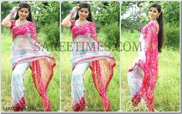 Madhu_Sharma_Designer_Saree