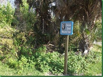 Sanibel Island 062