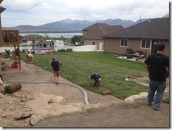Laying Sod (26)