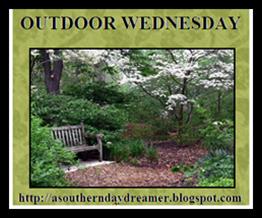 Outdoor-Wednesday-logo_thumb4_thumb1[2]